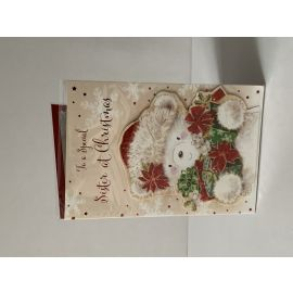 TO A SPECIAL SISTER AT CHRISTMAS PK OF 6 CODE 75