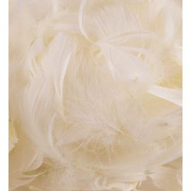 LOOSE FEATHERS IVORY MIXED SIZES 3-5 INCH 50G