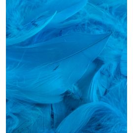 LOOSE FEATHERS TURQUOISE 50G