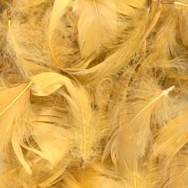 LOOSE FEATHERS GOLD 50G