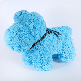 AMOUR ROSE PUP BLUE